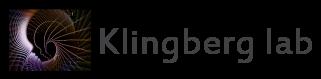 Klingberg lab